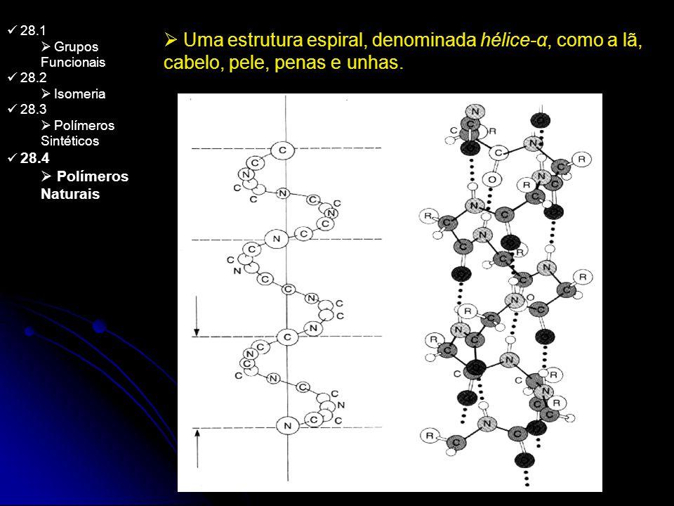 28.1 Grupos Funcionais 28.2 Isomeria 28.3 Polímeros Sintéticos 28.4 Polímeros Naturais Uma estrutura espiral, denominada hélice-α, como a lã, cabelo,