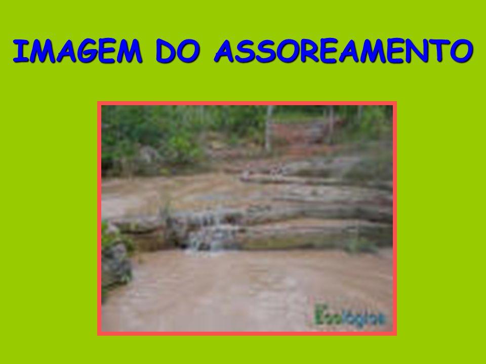 IMAGEM DO ASSOREAMENTO