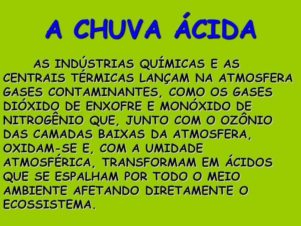 A CHUVA ÁCIDA AS INDÚSTRIAS QUÍMICAS E AS CENTRAIS TÉRMICAS LANÇAM NA ATMOSFERA GASES CONTAMINANTES, COMO OS GASES DIÓXIDO DE ENXOFRE E MONÓXIDO DE NITROGÊNIO QUE, JUNTO COM O OZÔNIO DAS CAMADAS BAIXAS DA ATMOSFERA, OXIDAM-SE E, COM A UMIDADE ATMOSFÉRICA, TRANSFORMAM EM ÁCIDOS QUE SE ESPALHAM POR TODO O MEIO AMBIENTE AFETANDO DIRETAMENTE O ECOSSISTEMA.