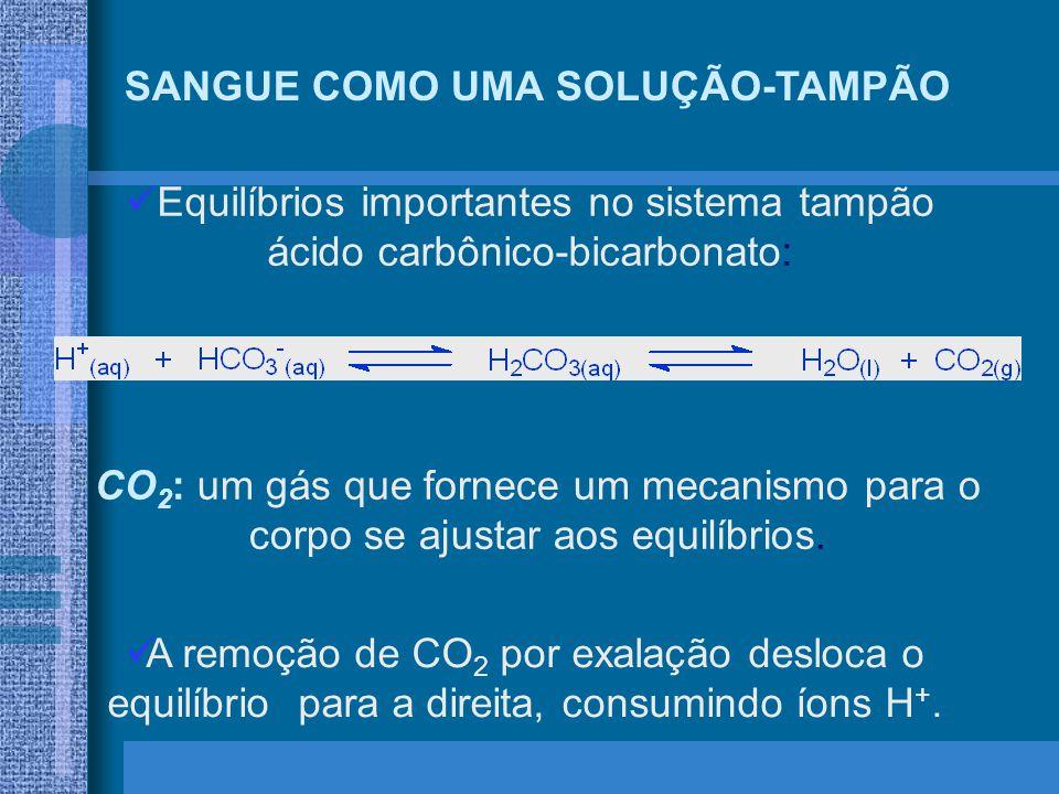 SANGUE COMO UMA SOLUÇÃO-TAMPÃO Equilíbrios importantes no sistema tampão ácido carbônico-bicarbonato: CO 2 : um gás que fornece um mecanismo para o corpo se ajustar aos equilíbrios.
