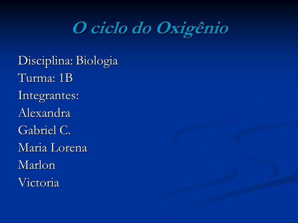 O ciclo do Oxigênio Disciplina: Biologia Turma: 1B Integrantes:Alexandra Gabriel C. Maria Lorena MarlonVictoria