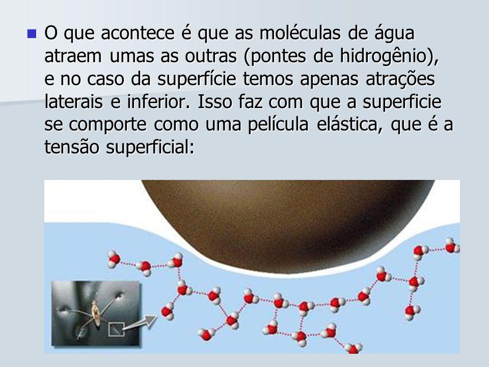 O que acontece é que as moléculas de água atraem umas as outras (pontes de hidrogênio), e no caso da superfície temos apenas atrações laterais e inferior.