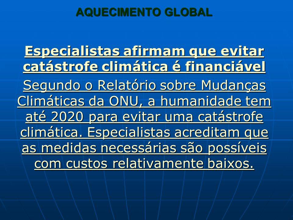 Especialistas afirmam que evitar catástrofe climática é financiável Especialistas afirmam que evitar catástrofe climática é financiável Segundo o Rela