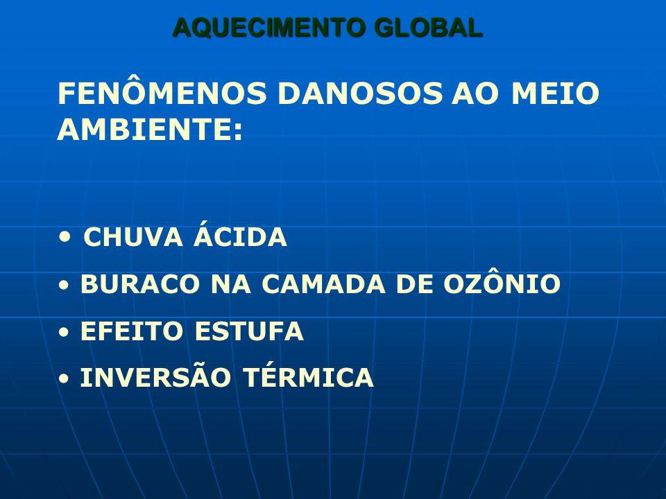 AQUECIMENTO GLOBAL FENÔMENOS DANOSOS AO MEIO AMBIENTE: CHUVA ÁCIDA BURACO NA CAMADA DE OZÔNIO EFEITO ESTUFA INVERSÃO TÉRMICA