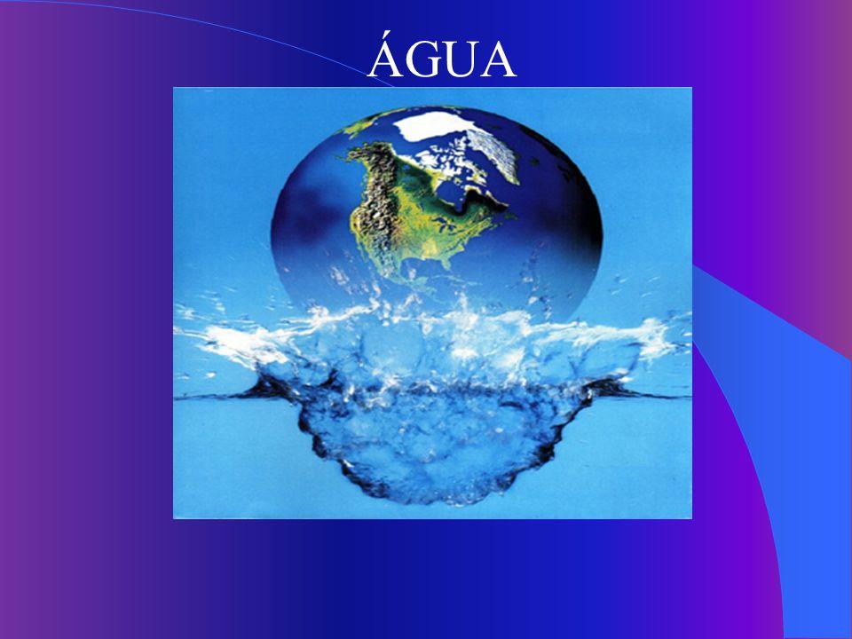 Ranking da Saúde Hídrica Critérios : - Quantidade de água doce/habitante.