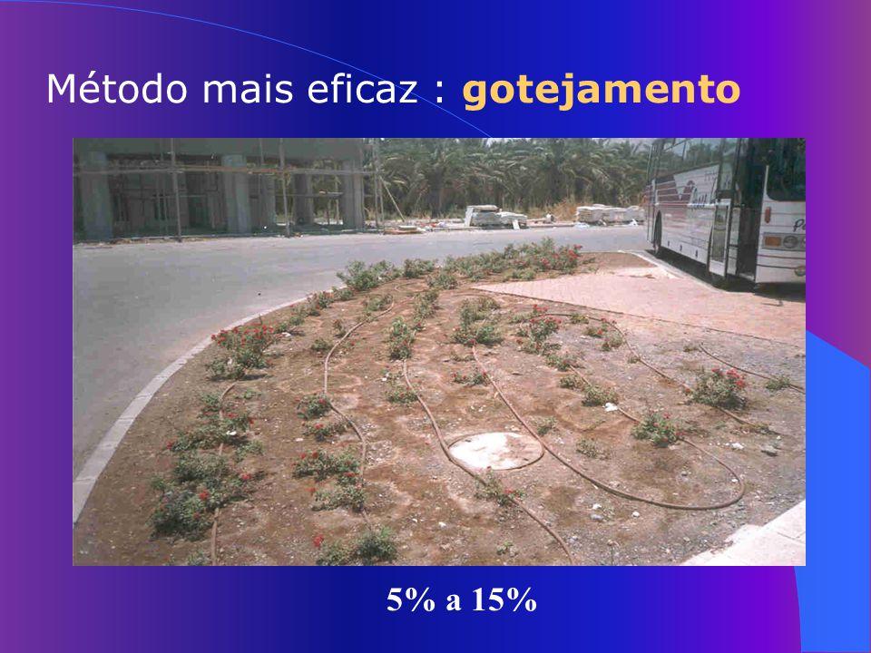 15% a 25% Pivô Central