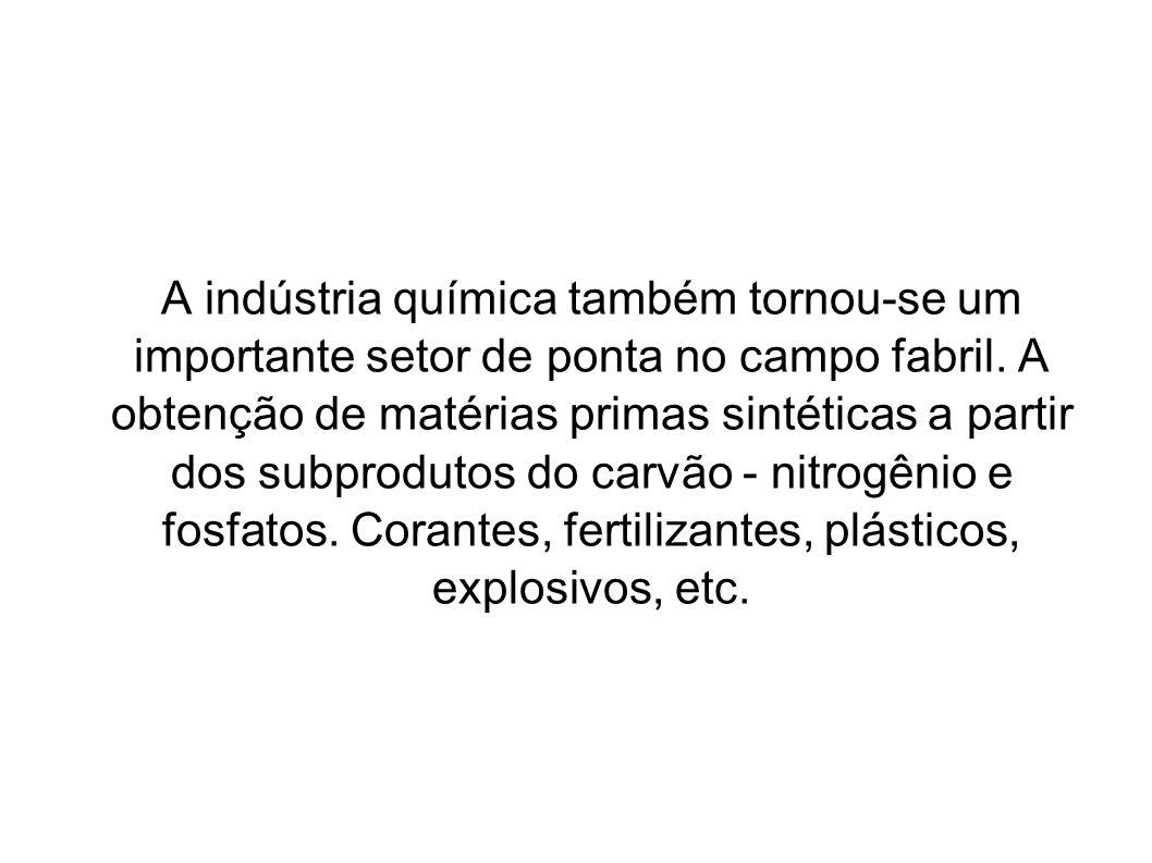A indústria química também tornou-se um importante setor de ponta no campo fabril. A obtenção de matérias primas sintéticas a partir dos subprodutos d