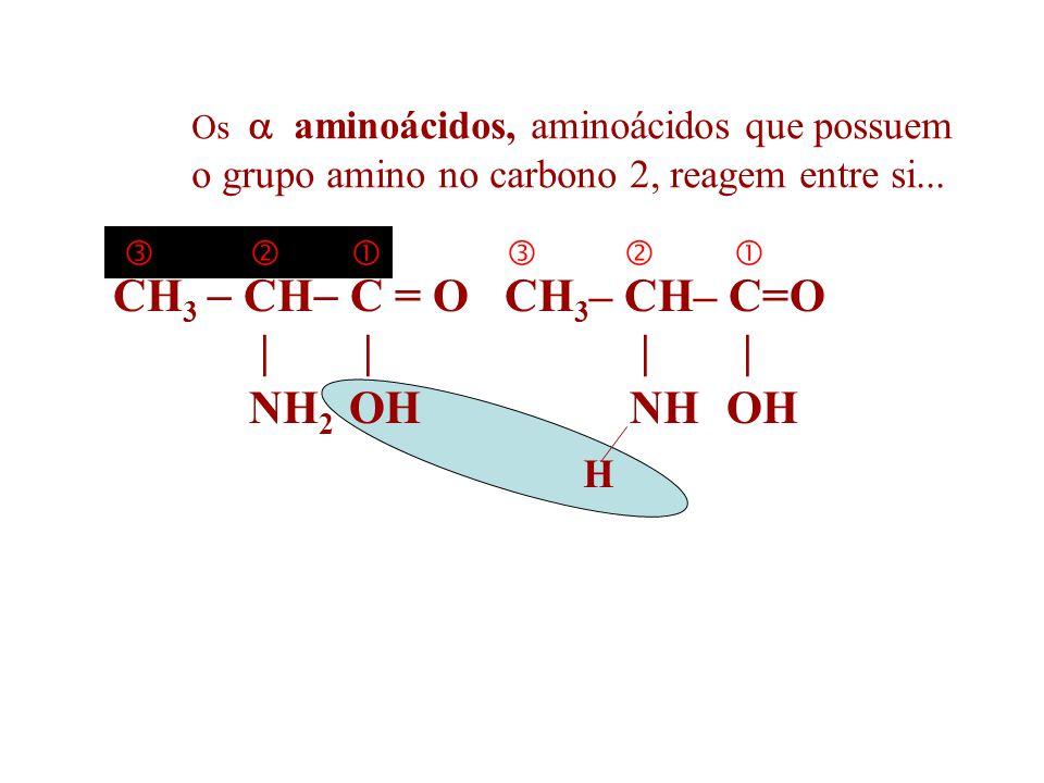 Reação de formação de Proteínas Reação de Condensação AMINOÁCIDOS PROTEÍNAS