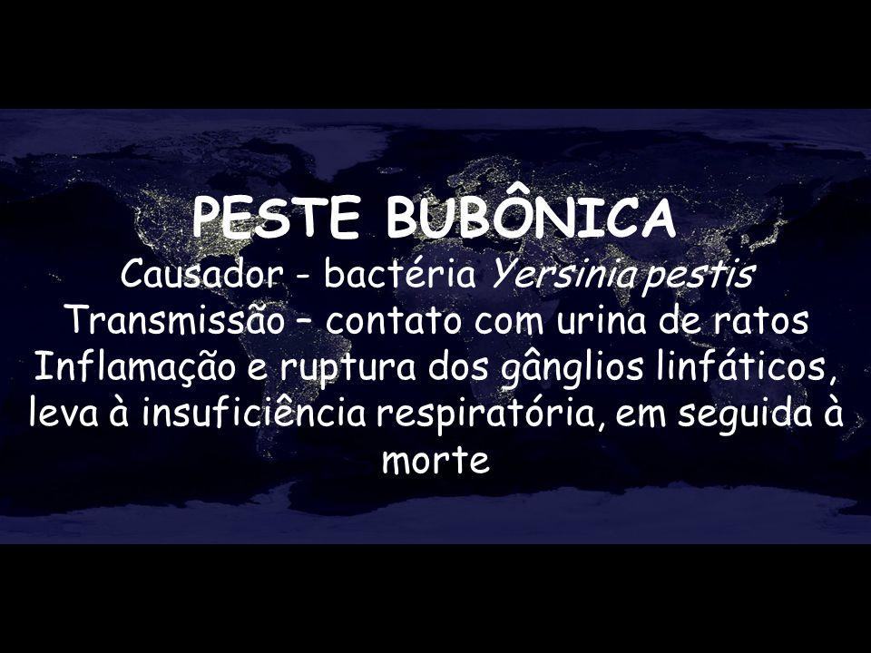 PESTE BUBÔNICA Causador - bactéria Yersinia pestis Transmissão – contato com urina de ratos Inflamação e ruptura dos gânglios linfáticos, leva à insuf