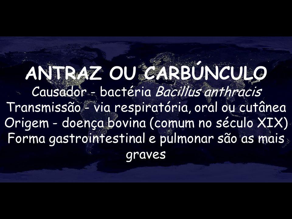 ANTRAZ OU CARBÚNCULO Causador - bactéria Bacillus anthracis Transmissão - via respiratória, oral ou cutânea Origem - doença bovina (comum no século XI