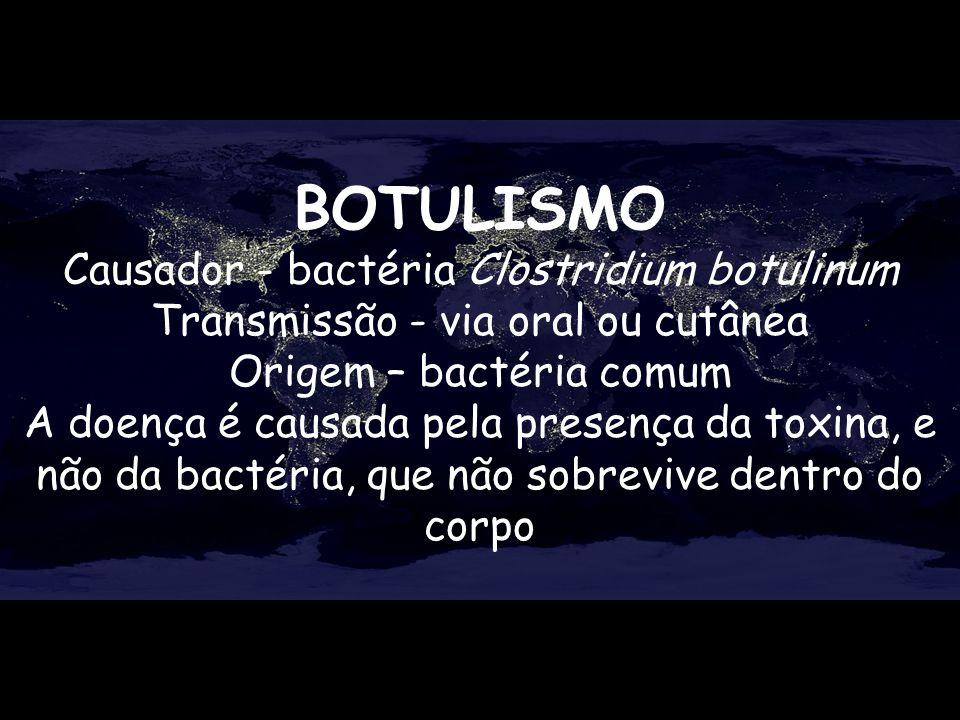 BOTULISMO Causador - bactéria Clostridium botulinum Transmissão - via oral ou cutânea Origem – bactéria comum A doença é causada pela presença da toxi