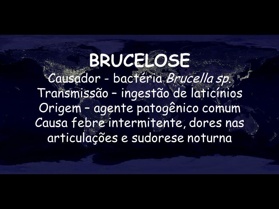 BRUCELOSE Causador - bactéria Brucella sp. Transmissão – ingestão de laticínios Origem – agente patogênico comum Causa febre intermitente, dores nas a