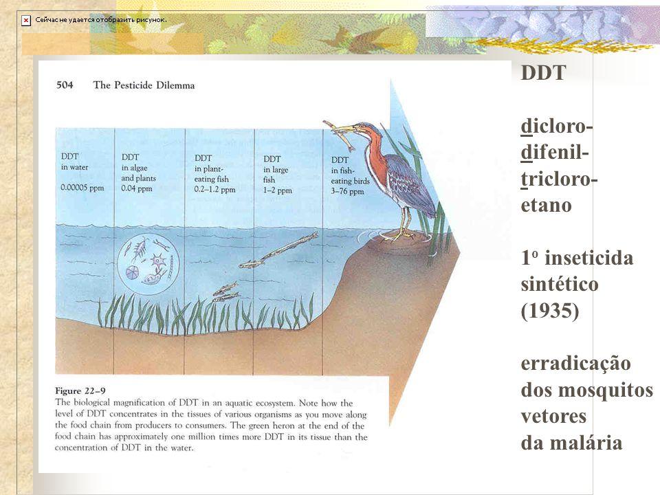 DDT dicloro- difenil- tricloro- etano 1 o inseticida sintético (1935) erradicação dos mosquitos vetores da malária