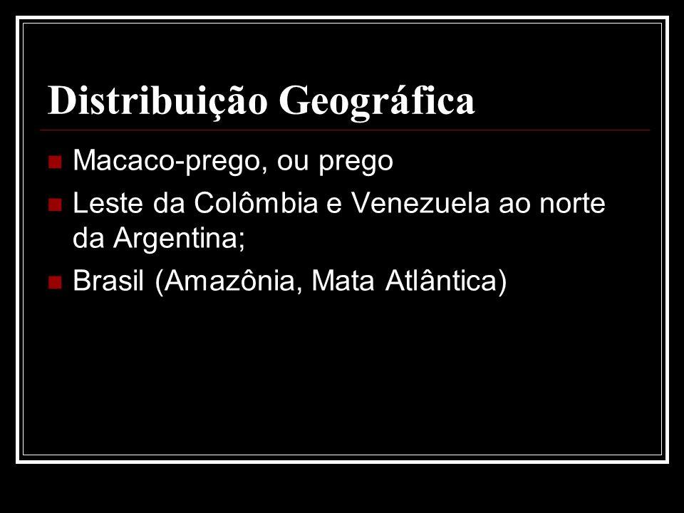 Distribuição Geográfica Macaco-prego, ou prego Leste da Colômbia e Venezuela ao norte da Argentina; Brasil (Amazônia, Mata Atlântica)