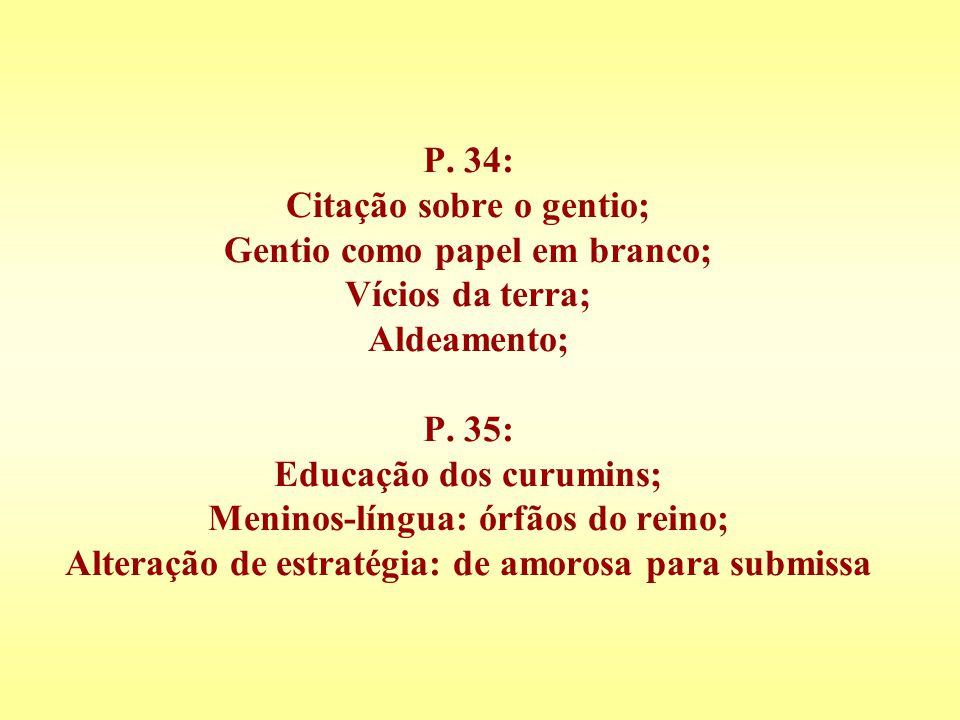 P. 34: Citação sobre o gentio; Gentio como papel em branco; Vícios da terra; Aldeamento; P. 35: Educação dos curumins; Meninos-língua: órfãos do reino