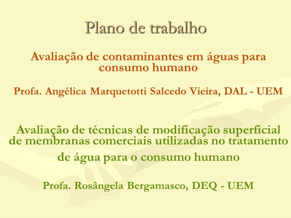 Plano de trabalho Avaliação de contaminantes em águas para consumo humano Profa. Angélica Marquetotti Salcedo Vieira, DAL - UEM Avaliação de técnicas