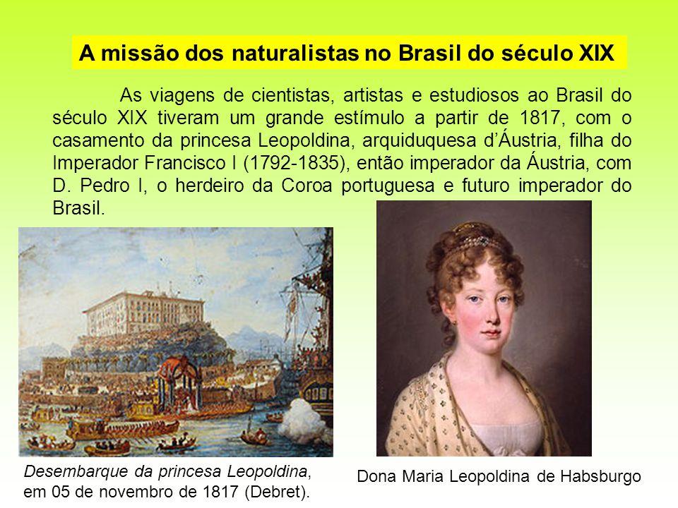 A missão dos naturalistas no Brasil do século XIX As viagens de cientistas, artistas e estudiosos ao Brasil do século XIX tiveram um grande estímulo a