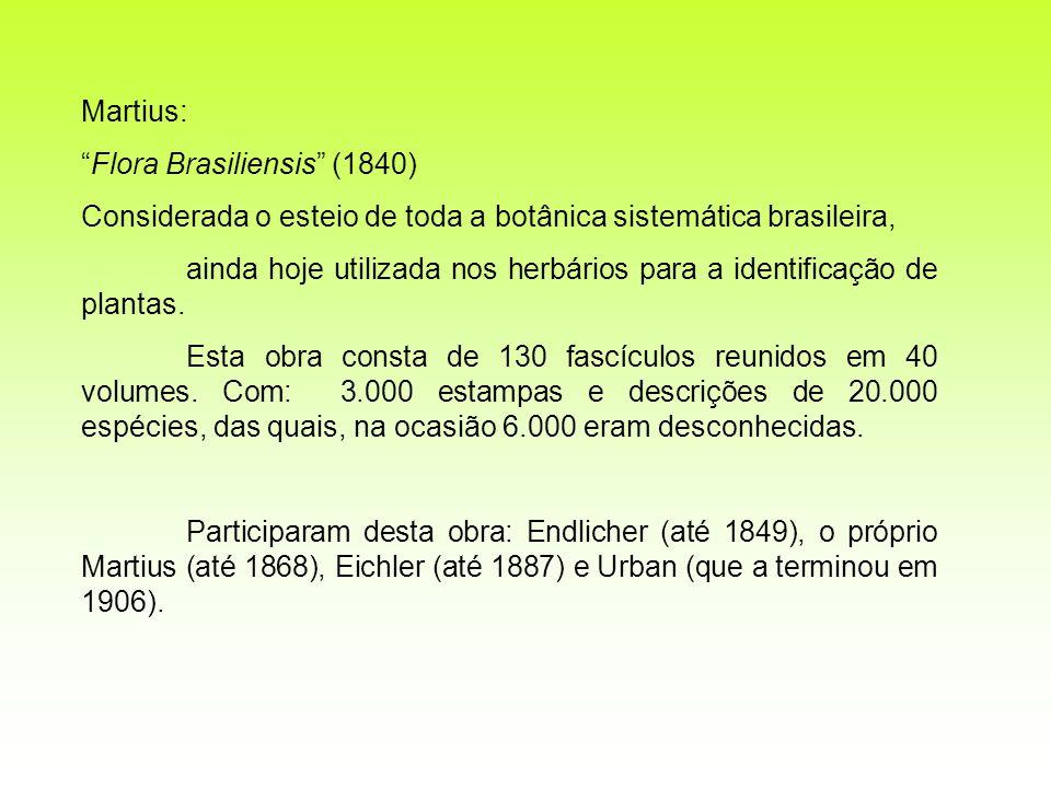 Martius: Flora Brasiliensis (1840) Considerada o esteio de toda a botânica sistemática brasileira, ainda hoje utilizada nos herbários para a identific