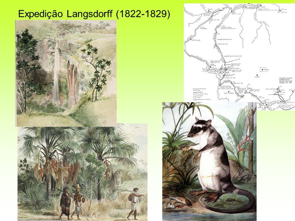 Expedição Langsdorff (1822-1829)