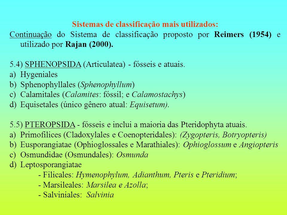 Sistemas de classificação mais utilizados: Continuação do Sistema de classificação proposto por Reimers (1954) e utilizado por Rajan (2000).