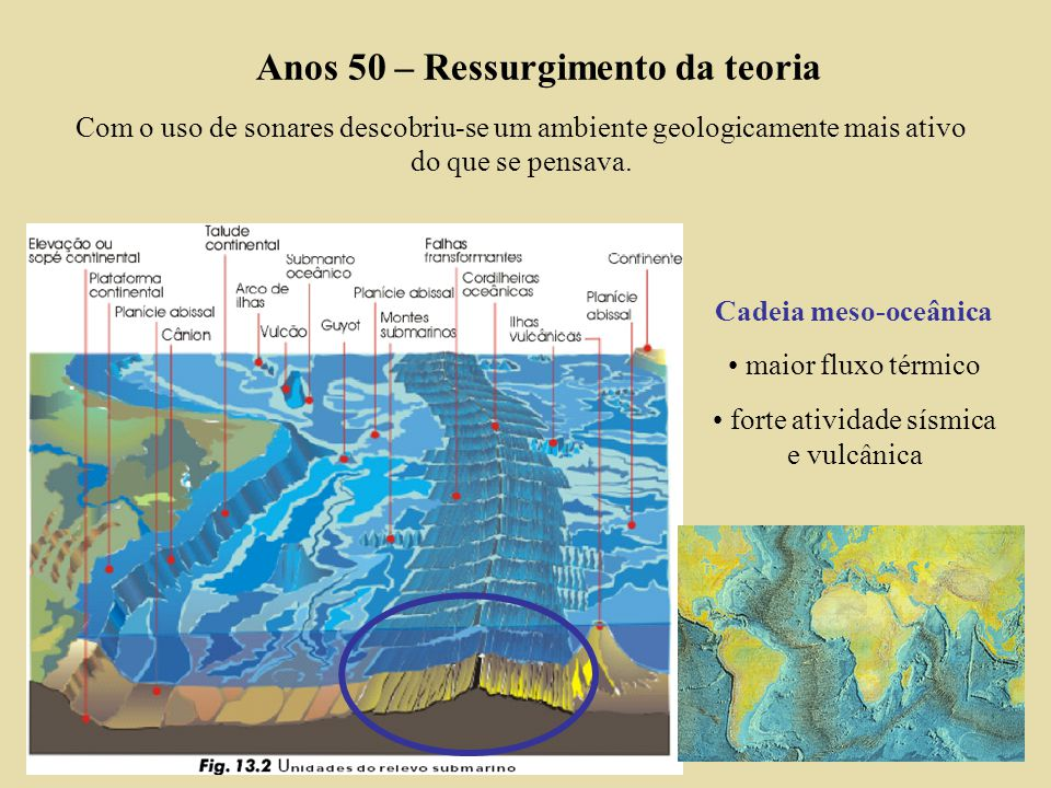 Anos 50 – Ressurgimento da teoria Com o uso de sonares descobriu-se um ambiente geologicamente mais ativo do que se pensava.