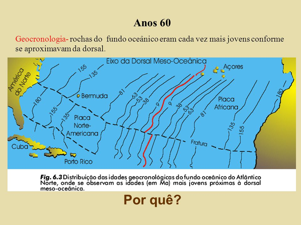 Anos 50 – Ressurgimento da teoria Com o uso de sonares descobriu-se um ambiente geologicamente mais ativo do que se pensava. Cadeia meso-oceânica maio
