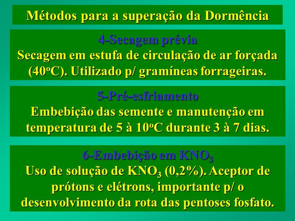 Métodos para a superação da Dormência 4-Secagem prévia Secagem em estufa de circulação de ar forçada (40 o C). Utilizado p/ gramíneas forrageiras. 5-P