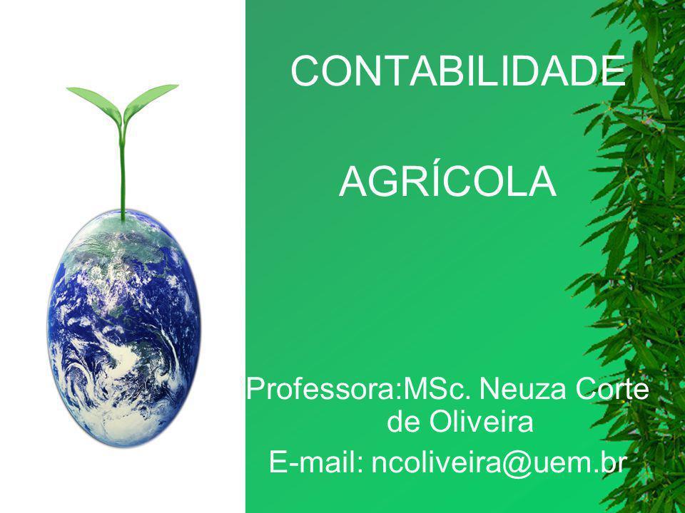 CONTABILIDADE AGRÍCOLA Professora:MSc. Neuza Corte de Oliveira E-mail: ncoliveira@uem.br