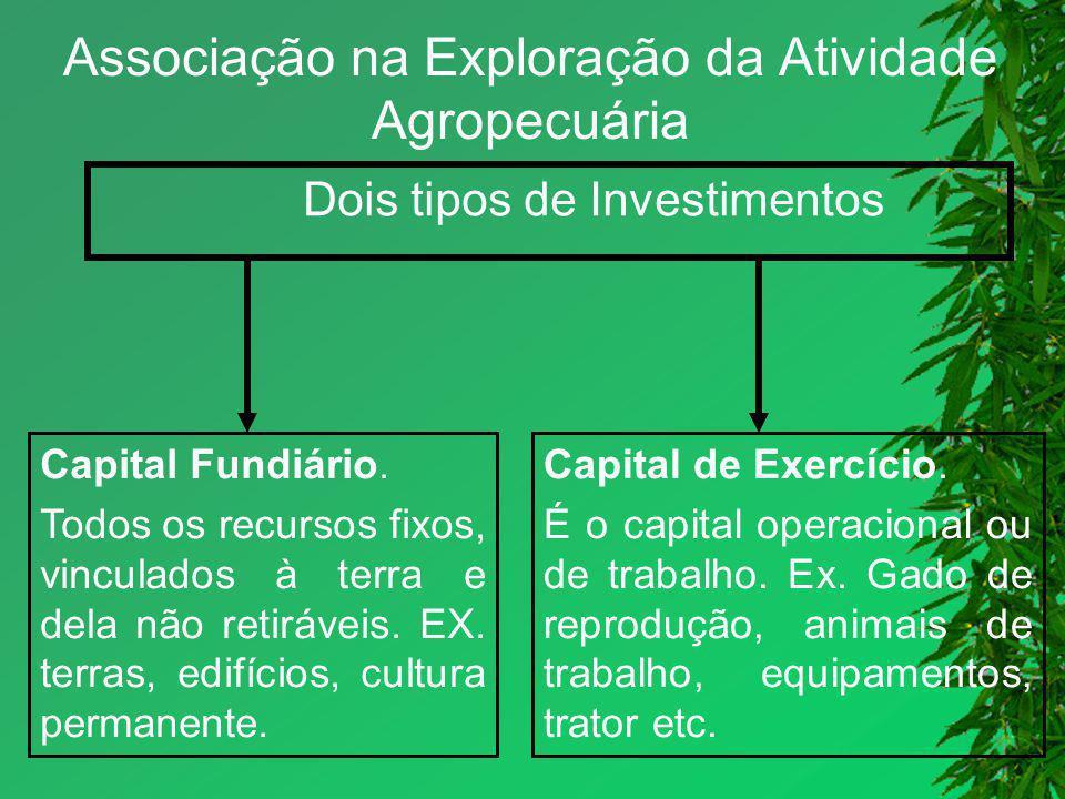 Associação na Exploração da Atividade Agropecuária Dois tipos de Investimentos Capital Fundiário. Todos os recursos fixos, vinculados à terra e dela n