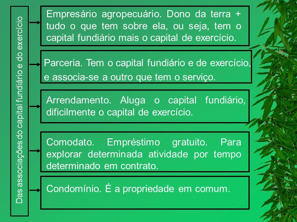 Das associações do capital fundiário e do exercício Empresário agropecuário. Dono da terra + tudo o que tem sobre ela, ou seja, tem o capital fundiári