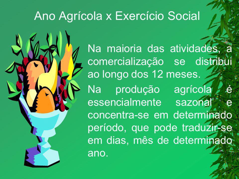 Ano Agrícola x Exercício Social Na maioria das atividades, a comercialização se distribui ao longo dos 12 meses. Na produção agrícola é essencialmente