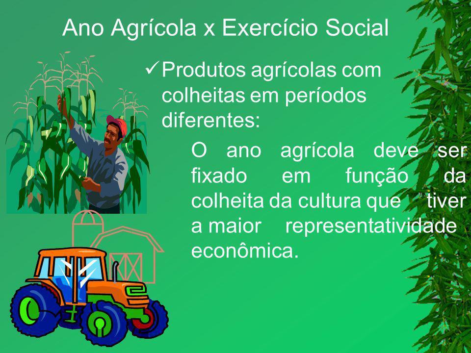 Ano Agrícola x Exercício Social Produtos agrícolas com colheitas em períodos diferentes: O ano agrícola deve ser fixado em função da colheita da cultu