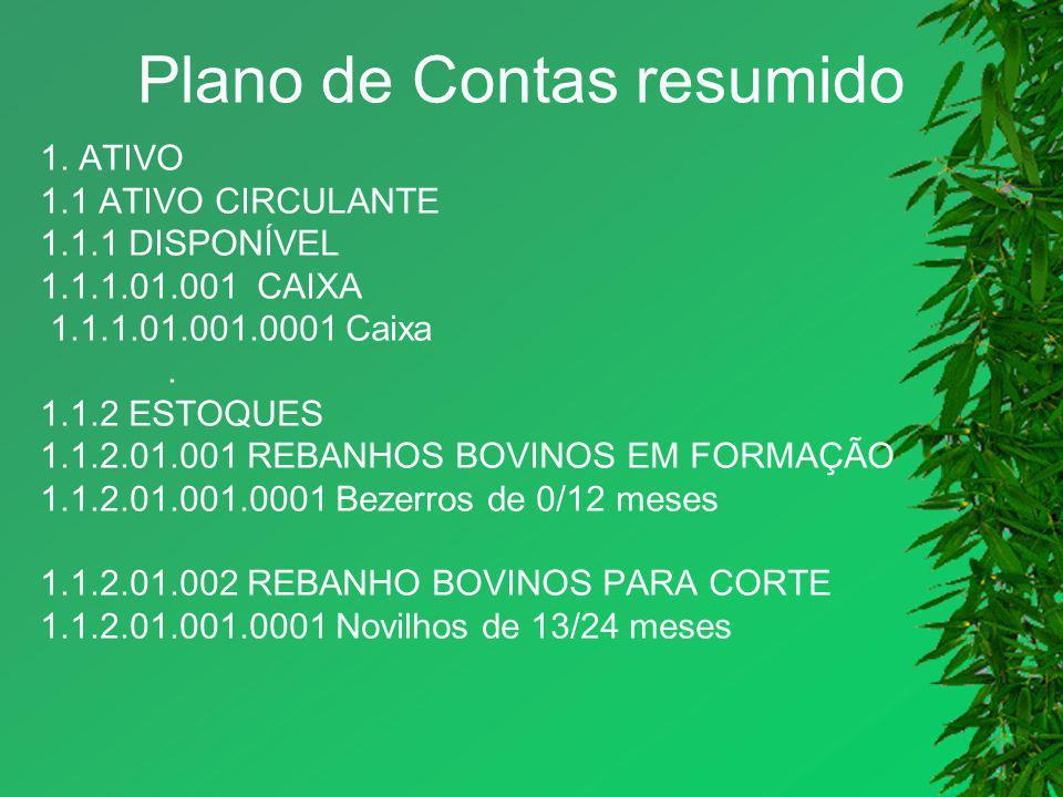 Plano de Contas resumido 1. ATIVO 1.1 ATIVO CIRCULANTE 1.1.1 DISPONÍVEL 1.1.1.01.001 CAIXA 1.1.1.01.001.0001 Caixa. 1.1.2 ESTOQUES 1.1.2.01.001 REBANH