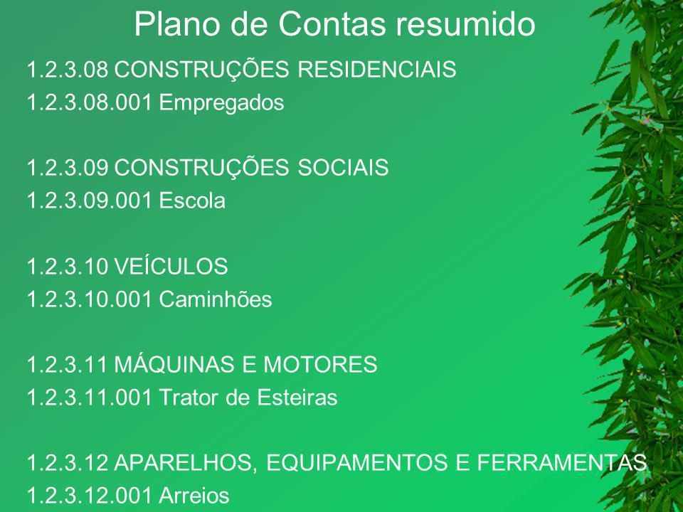 Plano de Contas resumido 1.2.3.08 CONSTRUÇÕES RESIDENCIAIS 1.2.3.08.001 Empregados 1.2.3.09 CONSTRUÇÕES SOCIAIS 1.2.3.09.001 Escola 1.2.3.10 VEÍCULOS