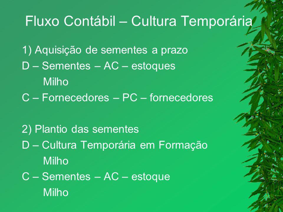 Fluxo Contábil – Cultura Temporária 1) Aquisição de sementes a prazo D – Sementes – AC – estoques Milho C – Fornecedores – PC – fornecedores 2) Planti