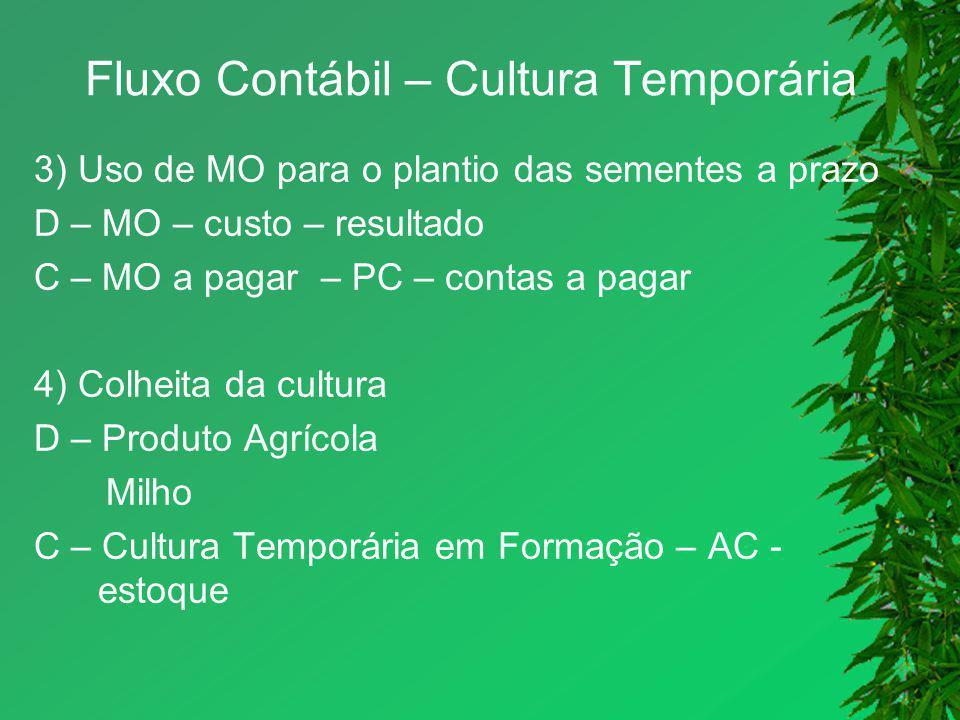Fluxo Contábil – Cultura Temporária 3) Uso de MO para o plantio das sementes a prazo D – MO – custo – resultado C – MO a pagar – PC – contas a pagar 4