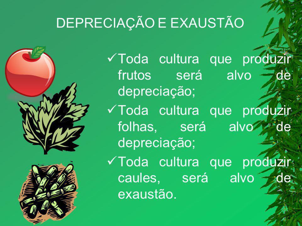 DEPRECIAÇÃO E EXAUSTÃO Toda cultura que produzir frutos será alvo de depreciação; Toda cultura que produzir folhas, será alvo de depreciação; Toda cul