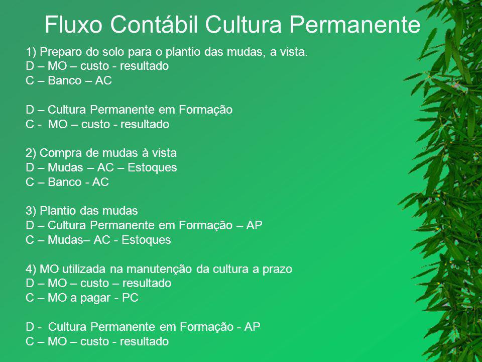 Fluxo Contábil Cultura Permanente 1) Preparo do solo para o plantio das mudas, a vista. D – MO – custo - resultado C – Banco – AC D – Cultura Permanen