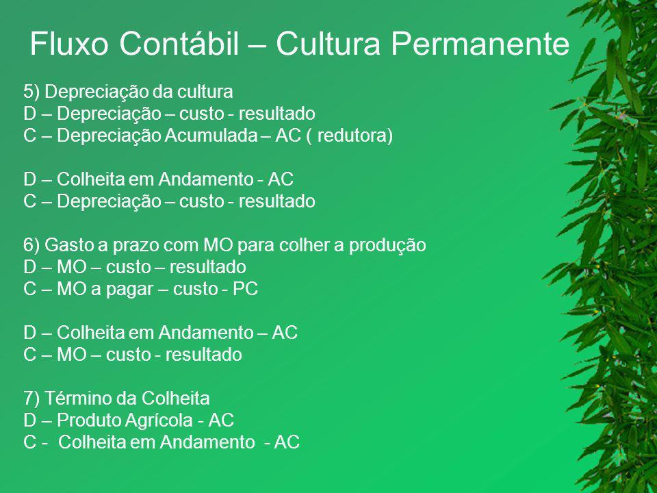 Fluxo Contábil – Cultura Permanente 5) Depreciação da cultura D – Depreciação – custo - resultado C – Depreciação Acumulada – AC ( redutora) D – Colhe