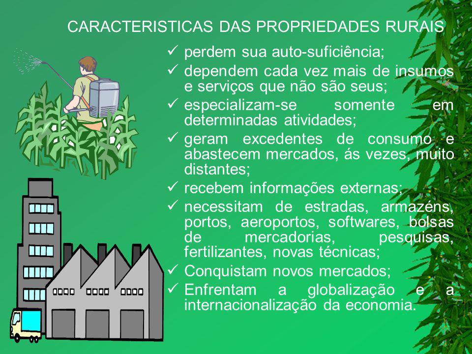 Propriedades Rurais Apresentam três grupos distintos: Produção vegetal – atividade agrícola; Produção animal - atividade zootécnica; Indústrias rurais - atividade agroindustrial