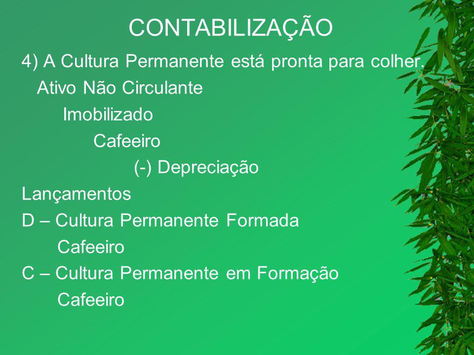 CONTABILIZAÇÃO 4) A Cultura Permanente está pronta para colher. Ativo Não Circulante Imobilizado Cafeeiro (-) Depreciação Lançamentos D – Cultura Perm