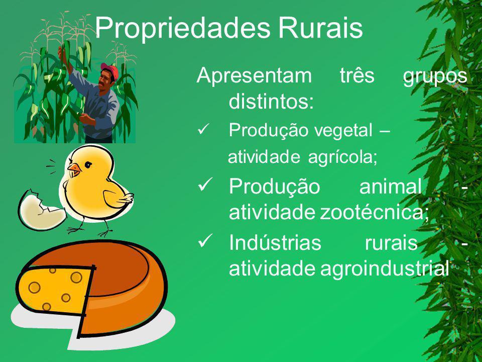 Propriedades Rurais Apresentam três grupos distintos: Produção vegetal – atividade agrícola; Produção animal - atividade zootécnica; Indústrias rurais