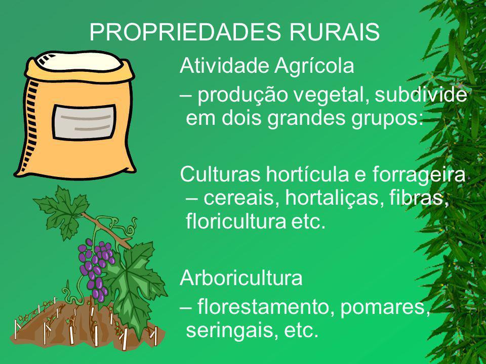 PROPRIEDADES RURAIS Atividade Agrícola – produção vegetal, subdivide em dois grandes grupos: Culturas hortícula e forrageira – cereais, hortaliças, fi