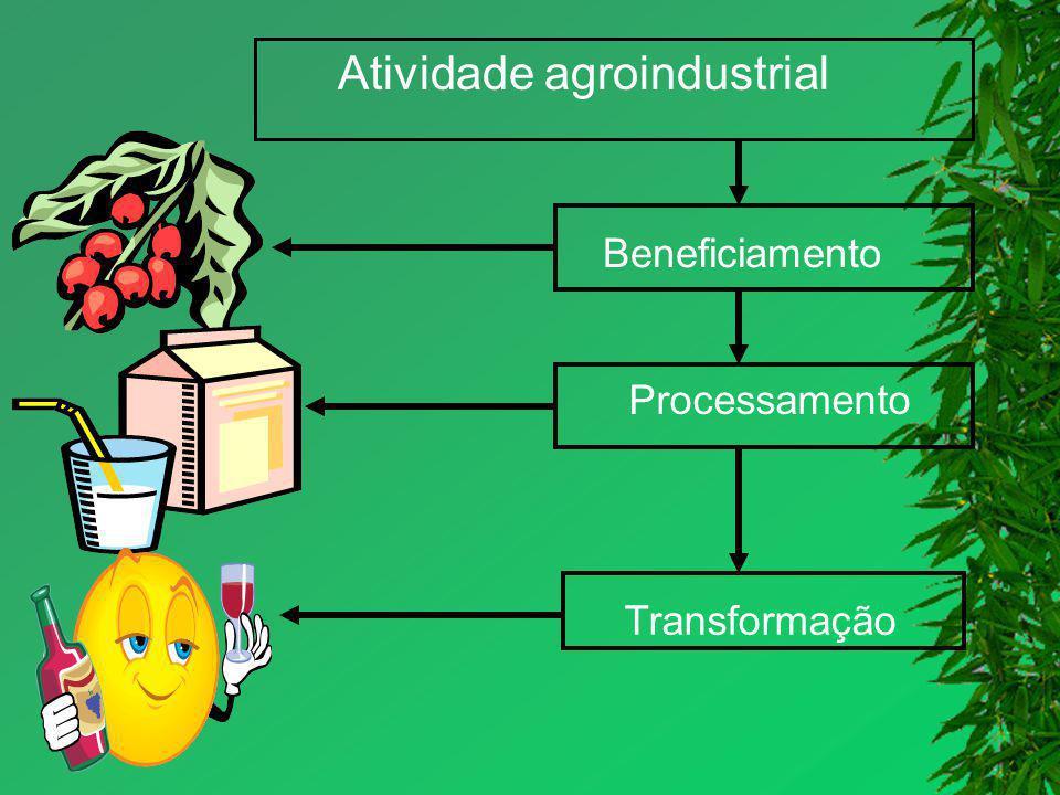 Atividade agroindustrial Beneficiamento Processamento Transformação