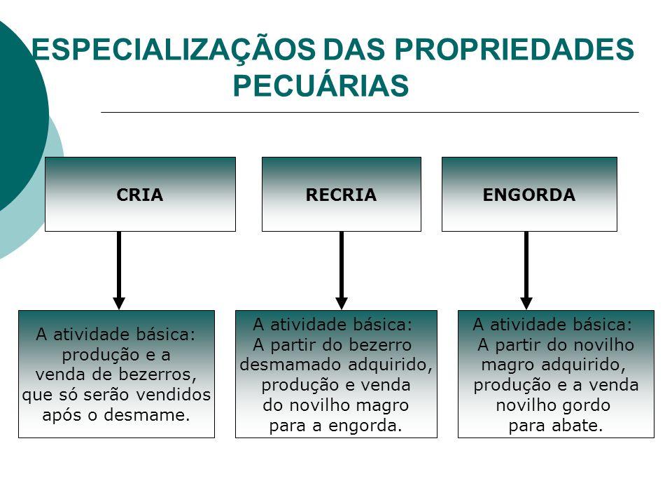 ESPECIALIZAÇÃOS DAS PROPRIEDADES PECUÁRIAS CRIARECRIAENGORDA A atividade básica: A partir do bezerro desmamado adquirido, produção e venda do novilho magro para a engorda.