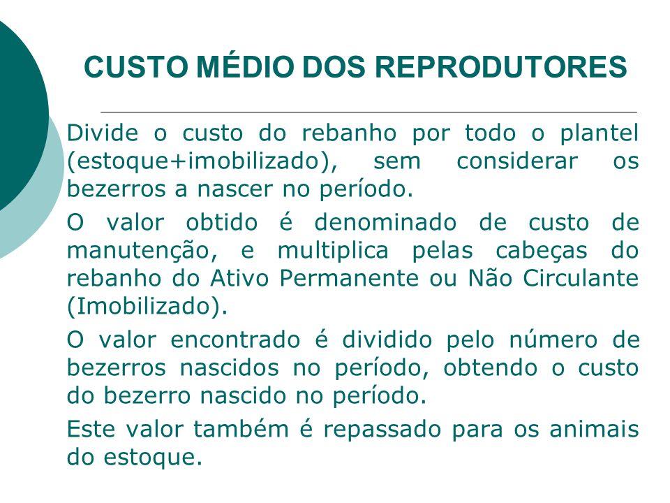 CUSTO MÉDIO DOS REPRODUTORES Divide o custo do rebanho por todo o plantel (estoque+imobilizado), sem considerar os bezerros a nascer no período.