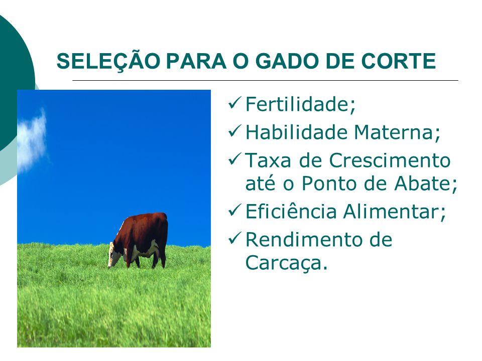 SELEÇÃO PARA O GADO DE CORTE Fertilidade; Habilidade Materna; Taxa de Crescimento até o Ponto de Abate; Eficiência Alimentar; Rendimento de Carcaça.