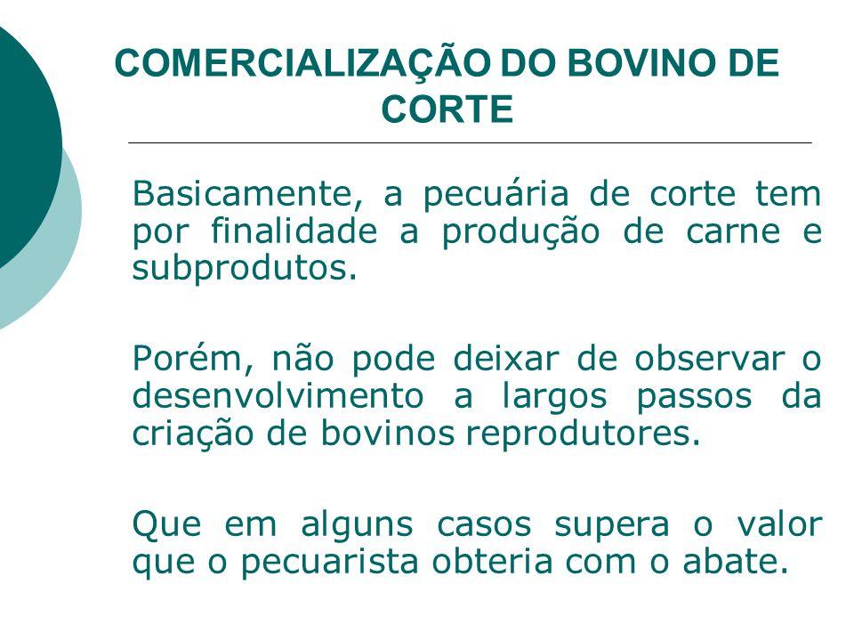 COMERCIALIZAÇÃO DO BOVINO DE CORTE Basicamente, a pecuária de corte tem por finalidade a produção de carne e subprodutos.