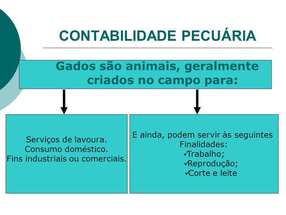 CONTABILIDADE PECUÁRIA Gados são animais, geralmente criados no campo para: Serviços de lavoura.