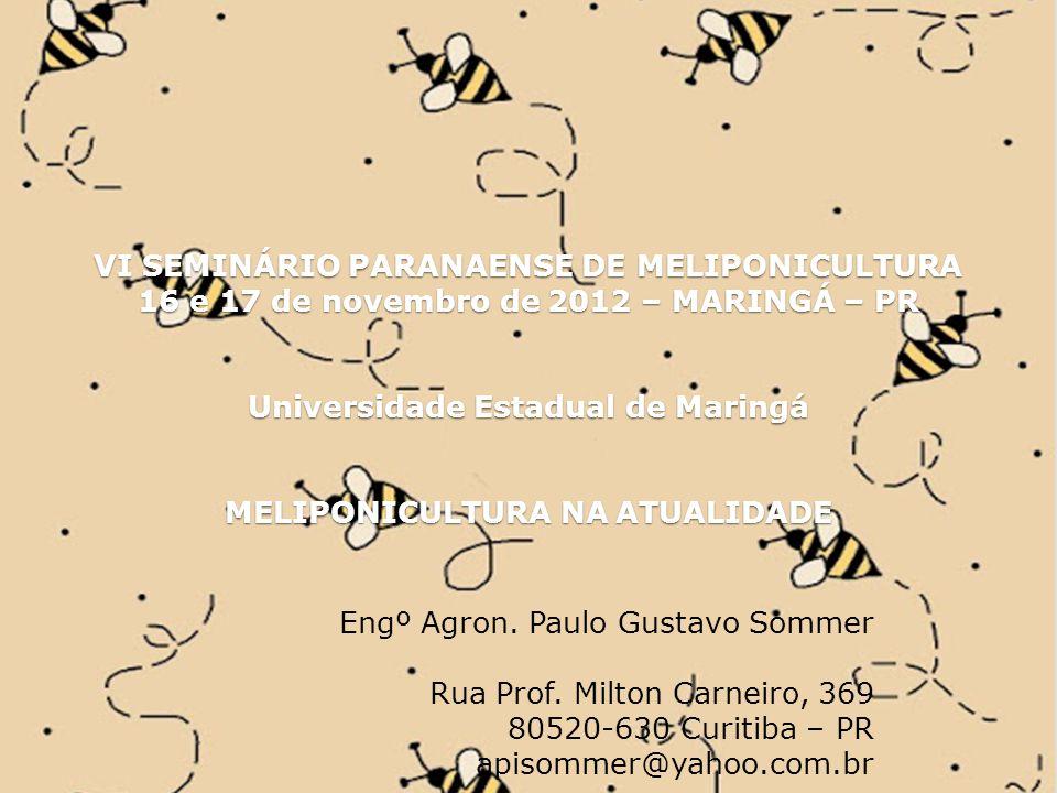 VI SEMINÁRIO PARANAENSE DE MELIPONICULTURA 16 e 17 de novembro de 2012 – MARINGÁ – PR Universidade Estadual de Maringá MELIPONICULTURA NA ATUALIDADE Engº Agron.